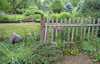 Photograph - Tranquil Gardens by Aimee L Maher ALM GALLERY