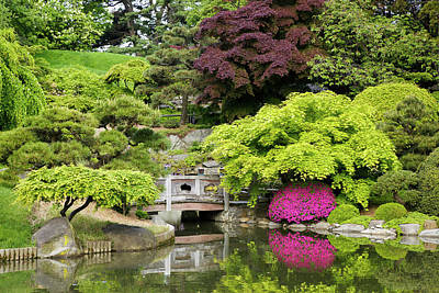 Photograph - Tranquil Secluded Japanese Garden With by Beklaus