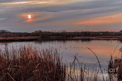 Photograph - Tranquil Sunset by Susan Rydberg