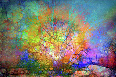 Digital Art - Translating The Dreams I Hold Deep Inside  by Tara Turner