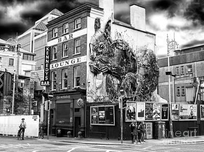 Photograph - Trash Animals Dublin by John Rizzuto