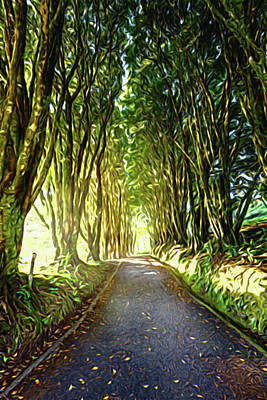 Moody Trees - Tree-lined alley by Alexey Stiop