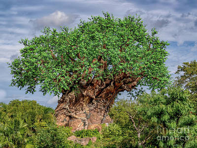 Photograph - Tree Of Life - Disney World In Orlando Florida by Dale Powell