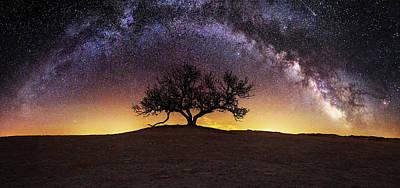 Landmarks Royalty Free Images - Tree of Wisdom Royalty-Free Image by Aaron J Groen