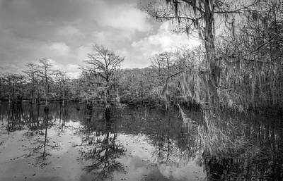 Photograph - Tree Reflection #4 by David Heilman