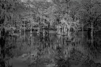 Photograph - Tree Reflections #2 by David Heilman