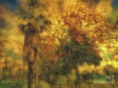Photograph - Tree Scene by Leigh Kemp