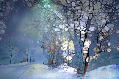 Digital Art - Tree Spirits In A Winter Night by Tara Turner