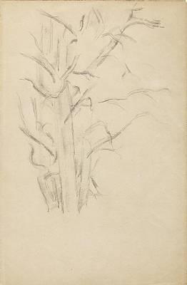 Studio Grafika Vintage Posters - Tree study 1886 88 by Paul Cezanne Paintings