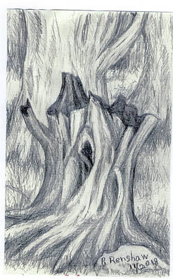 Drawing - Tree Trunk by Ruth Renshaw