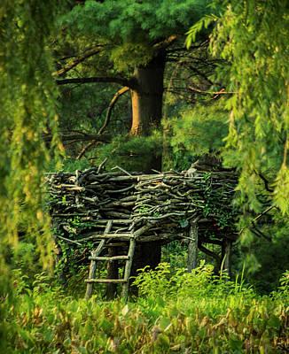 Photograph - Treehouse by Adam Kilbourne
