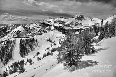 Photograph - Trees Along The Ridgeline Black And White by Adam Jewell