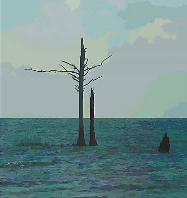 Classic Christmas Movies - Trees In Pamlico Sound 3 by Cathy Lindsey