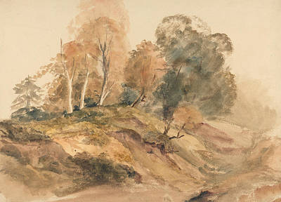 Drawing - Trees On A Bank by Peter De Wint
