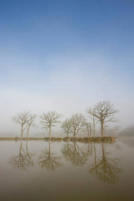 Photograph - Trees Reflections In A Fishing Pond On by Adam Burton / Robertharding