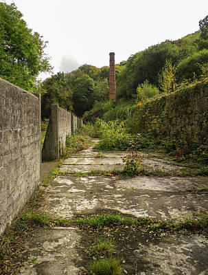 Photograph - Trevanny Dry Luxulyan Cornwall by Richard Brookes