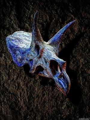 Photograph - Triceratops Horridus Skull 2 by Weston Westmoreland