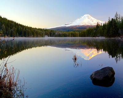 Photograph - Trillium At Dawn by Todd Kreuter
