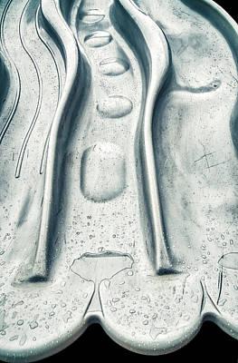 Photograph - Triple Slide In Rain by Gary Slawsky