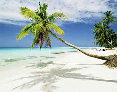 Photograph - Tropical Beach by Manfred Gottschalk