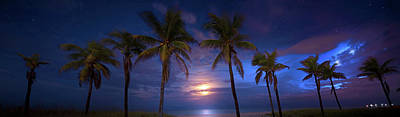 Fantasy Royalty-Free and Rights-Managed Images - Tropical Magic by Mark Andrew Thomas