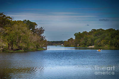 Photograph - Tropical River by Judy Hall-Folde