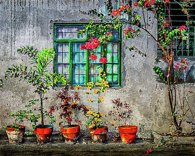Photograph - Tropical Wall by Michael Arend