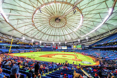 Painting - Tropicana Field Tampa Bay Rays by Christopher Arndt
