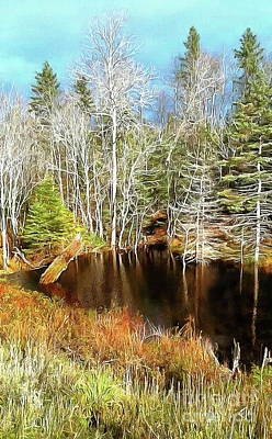 Photograph - Trout Pond In Autumn  by Elaine Manley