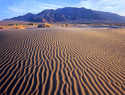 Photograph - Tucki Mountain And Mesquite Flat Sand by Tim Fitzharris/ Minden Pictures