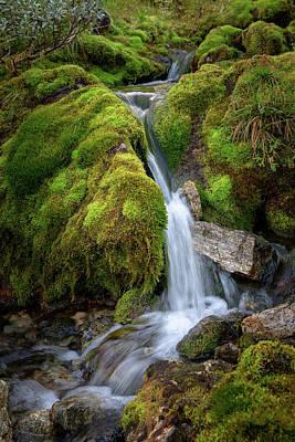 Photograph - Tufteelvi, Norway by Andreas Levi