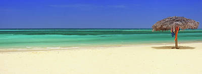 Photograph - Turquoise Sea With Empty Beach And Palm by Cunfek