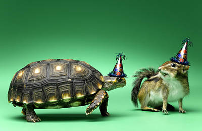 Turtle And Chipmunk Wearing Party Hats Art Print by Jeffrey Hamilton
