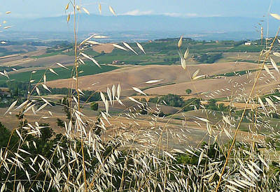 Stellar Interstellar Royalty Free Images - Tuscany Countryside Royalty-Free Image by Norma Brandsberg