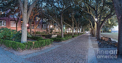 Photograph - Twilight Panorama Of Charleston Waterfront Park Promenade And Shady Canopy Of Oaks - South Carolina by Silvio Ligutti