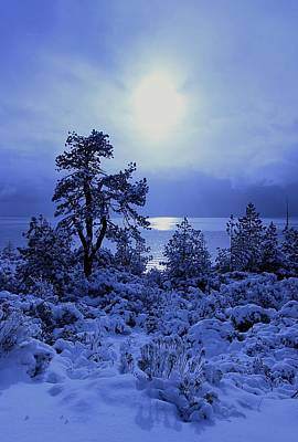 Photograph - Twilight Winter Dreams  by Sean Sarsfield