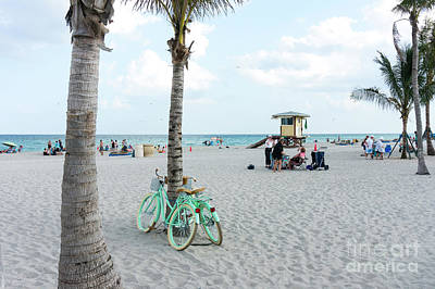 Photograph - Two Beach Cruiser Bicycles Lean Against A Palm Tree On Hollywood by William Kuta