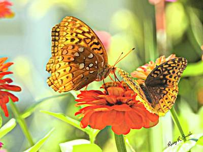 Digital Art - Two Butterflies On One Flower. by Rusty R Smith