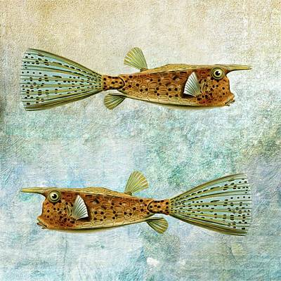Outerspace Patenets Rights Managed Images - Two Fish Royalty-Free Image by AL BaMass