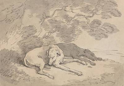 Drawing - Two Greyhounds Lying Under A Tree by Thomas Rowlandson