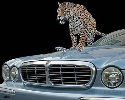 Photograph - Two Jaguars 1 by Larry Linton