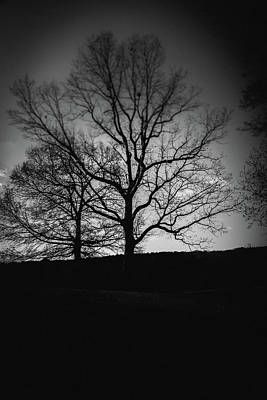 Photograph - Two Tree Silhouette by Doug Camara