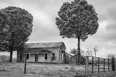 Photograph - Two Trees In Kentucky by John McGraw