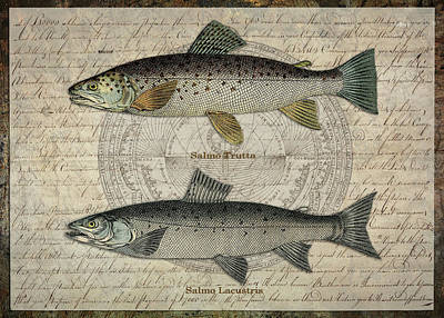 Digital Art - Two Trout by Terry Kirkland Cook