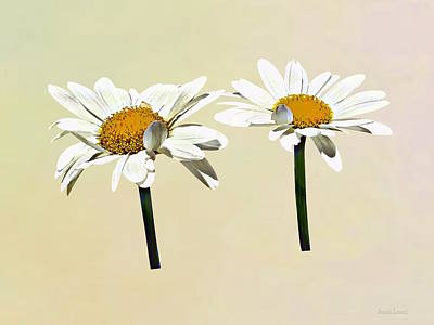 Photograph - Two White Daisies Waving by Susan Savad
