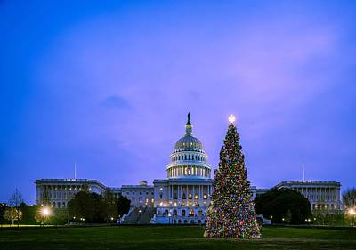 Royalty-Free and Rights-Managed Images - U S  Capitol Christmas Tree Lit 3 by Celestial Images