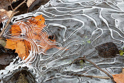 Photograph - Under Ice by Jeff Severson