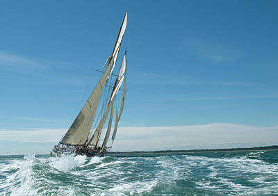 Photograph - Under Sail by Guynichollsphotography