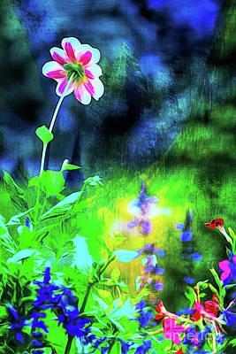 Photograph - Underwater Garden Abstract by Anita Pollak