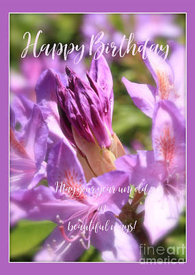 Photograph - Unfolding Azalea Bud Birthday Card by Carol Groenen